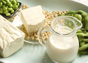 Soy, Fermented foods, Obesity, Nutrition